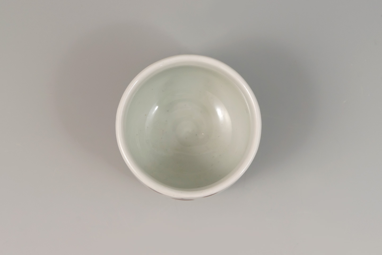 riz0256