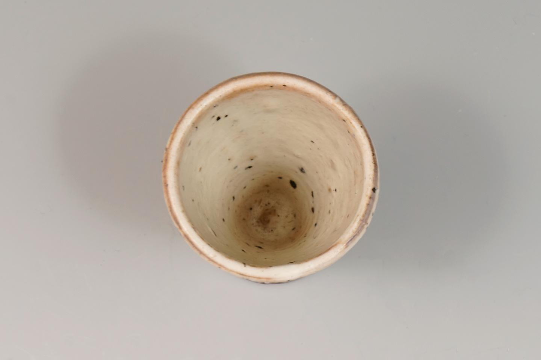 riz0260