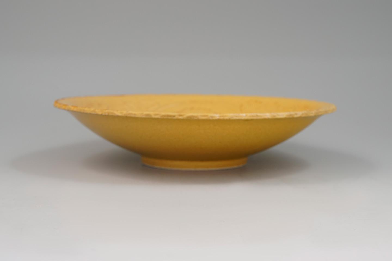 riz0264
